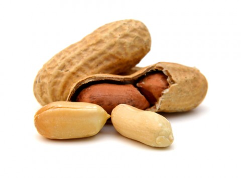 Early Introduction of Peanut Foods and Epigenetics Could Affect Peanut Allergy Development