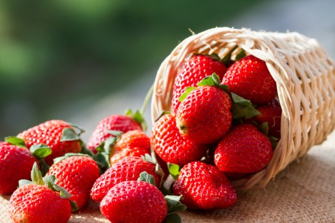 Sweet Pickings: Could Strawberries Help Fight Oral Cancer?